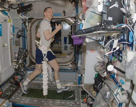 Iss Interior by Inside International Space Station Page 3 Pics About Space