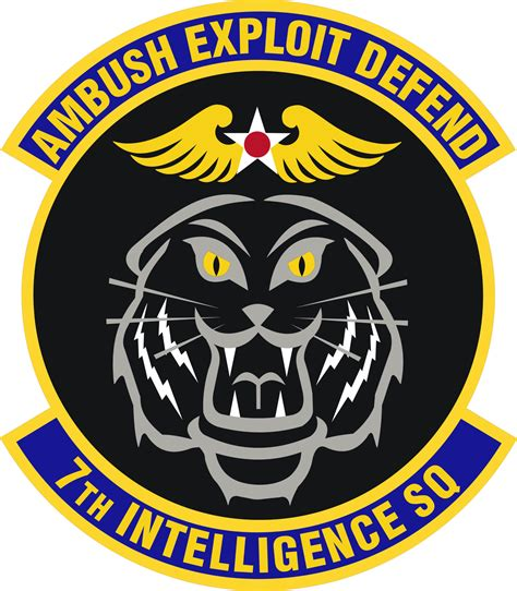 The Squadron 7th intelligence squadron