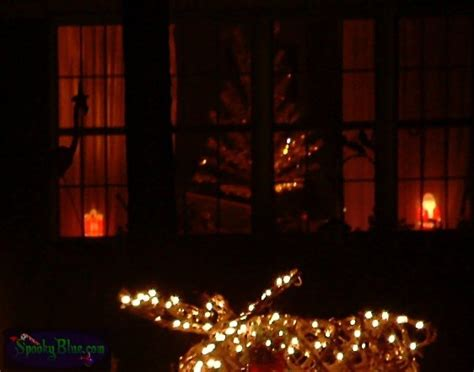 snug harbor lights spookyblue com 187 silhouette