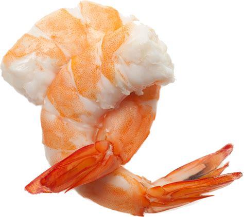 png image shrimp hd png transparent shrimp hd png images pluspng
