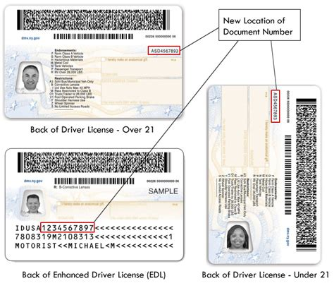 Address Lookup By Drivers License Number Sle Photo Documents New York State Dmv
