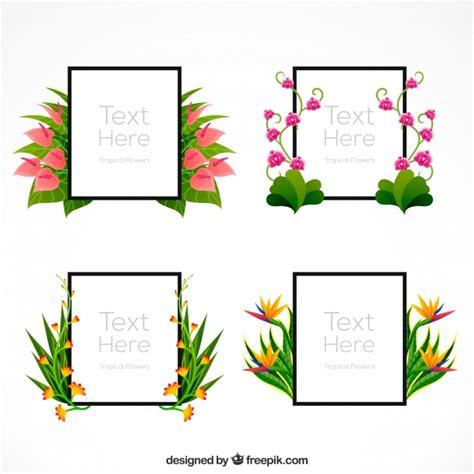 cornici confezionate cornici decorative confezionate con fiori esotici