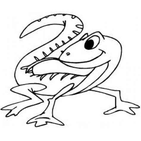 cute gecko coloring pages cute coloring pages coloring lab