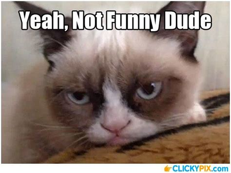 Funny Face Memes - you re not funny serious face meme funny pictures