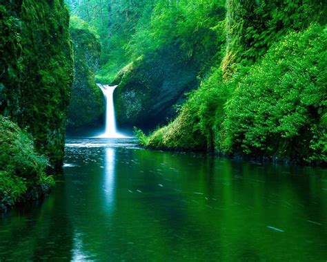 imagenes de paisajes tropicales imagenes paisajes tropicales im 225 genes taringa