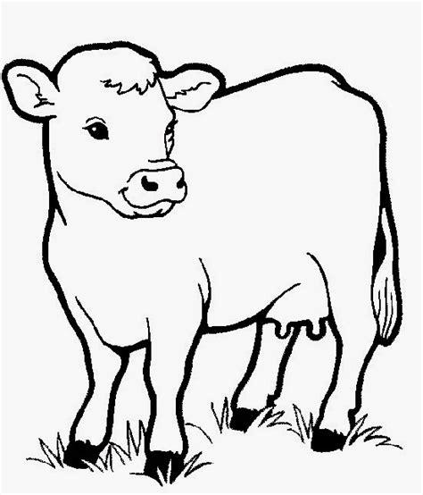 gambar sketsa mewarnai binatang sapi bahasapendidikan bahasapendidikan