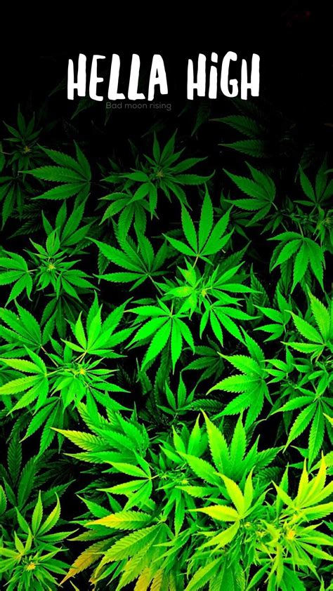 stoner backgrounds trippy stoner wallpapers 56 images