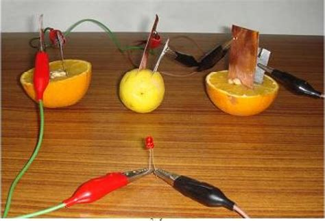 fruit electricity how to make fruit cell