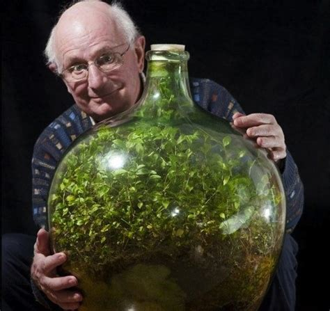 sealed bottle garden 50 year old record busting bottled terrarium and it s