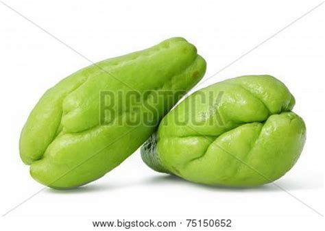 tayota in english chayote images illustrations vectors chayote stock