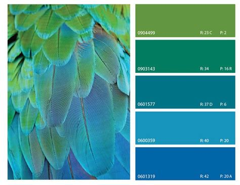 blue and green color schemes 414 best images about great color combinations on