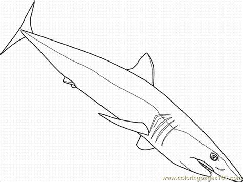 shortfin mako shark coloring page free shark coloring