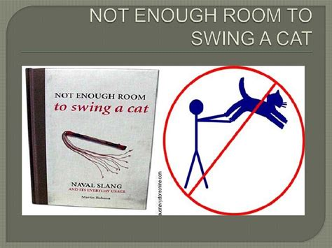 enough room to swing a cat animal idioms