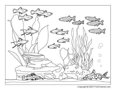 the aquarium colouring books printable fishchannel coloring page community tank bebo pandco