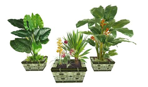 Tropical Planter by Second Marketplace 3 Planters With Tropical Flowers And Plants