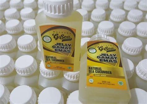 Herbal Untuk Demam Berdarah obat herbal untuk obati demam berdarah pada anak home