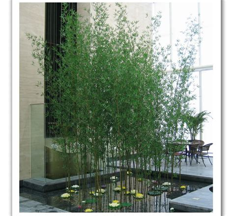 the complete guide to buying the best bamboo sheets of 2018 best quality house plant bamboo tree artificial bamboo