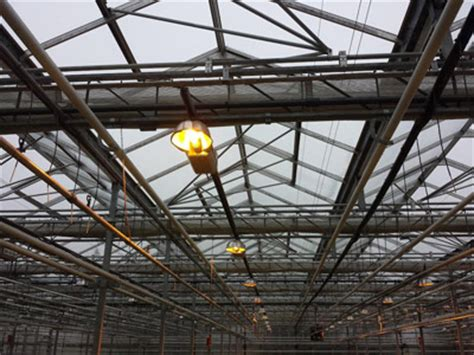 Greenhouse Lighting Fixtures Supplemental Lighting Considerations For A Commercial Greenhouse Commercial Greenhouse