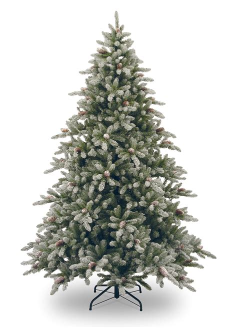 images of christmas trees 9ft snowy concolor fir artificial christmas tree hayes