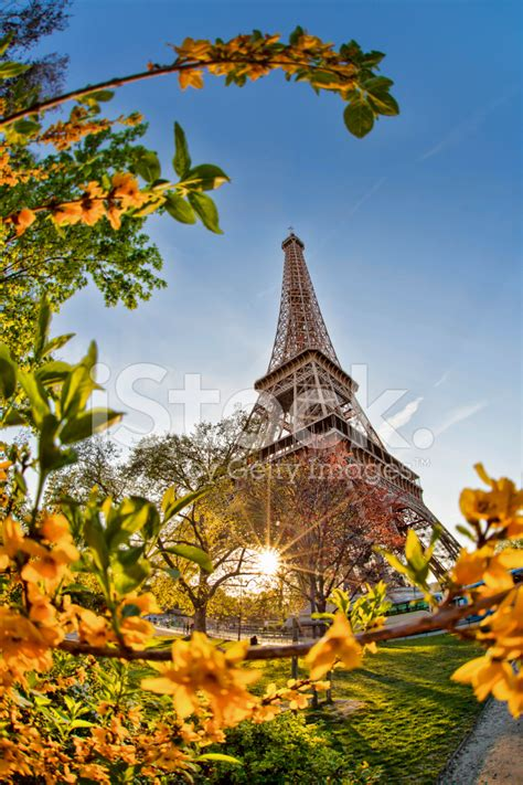 film eiffel i m in love free download eiffel tower during spring time in paris france stock