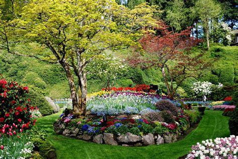 paisajismo jardin dise 241 o de jardines y paisajismo