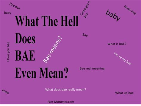 what does sog stand for what does bae what is bae