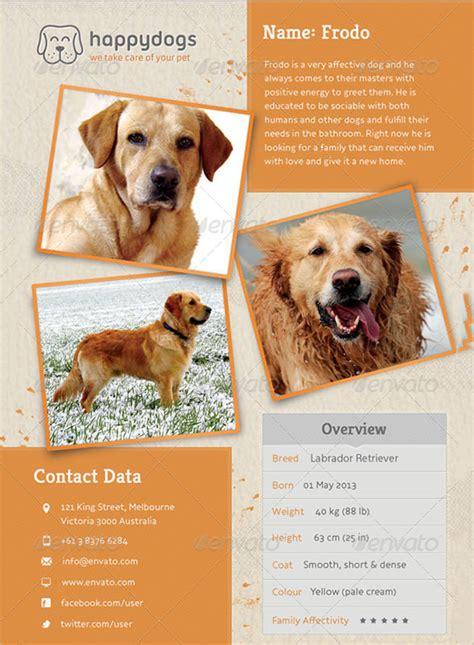 pet flyer template e3a018972cfe abilityskillup