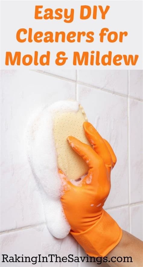 how to get rid of mold naturally cleaning never ends