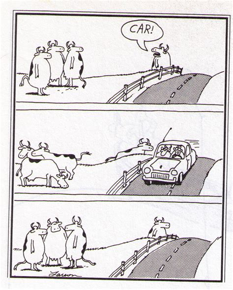 the far side of the far side