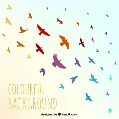 imagenes de aves sin fondo fondo de p 225 jaros coloridos descargar vectores premium
