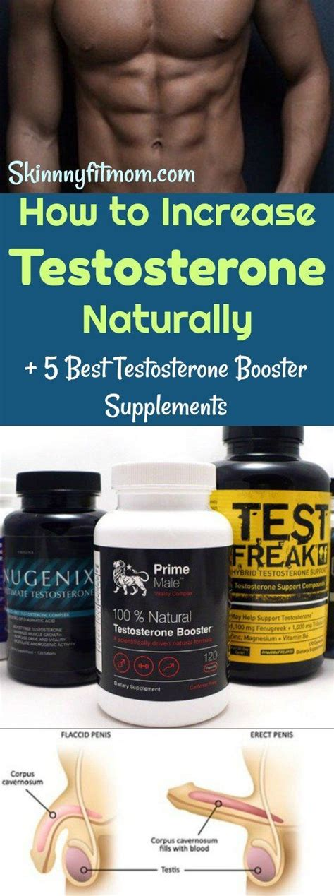 A Whole Lot Of Testosterone by 25 B 228 Sta Increase Testosterone Naturally Id 233 Erna P 229