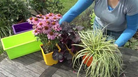 Charmant Plantes Vivaces En Jardiniere #1: maxresdefault.jpg