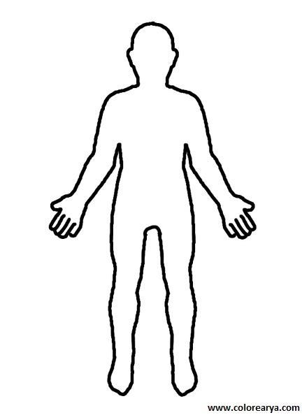 person shape coloring page el cuerpo humano para dibujar facil imagui