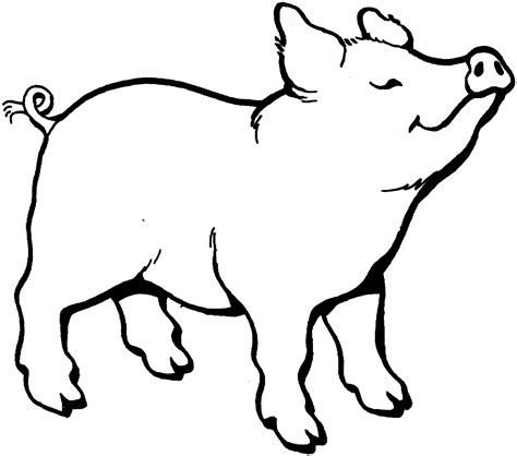 pig clipart black and white pig drawings black and white clipart best