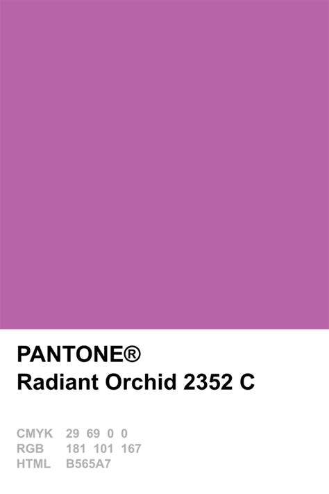 color of the year 2014 pantone colour of the year 2014 radiant orchid