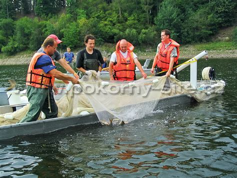 boat seine net pokorn 221 s 205 tě nets enterprise purse pelagic seine nets