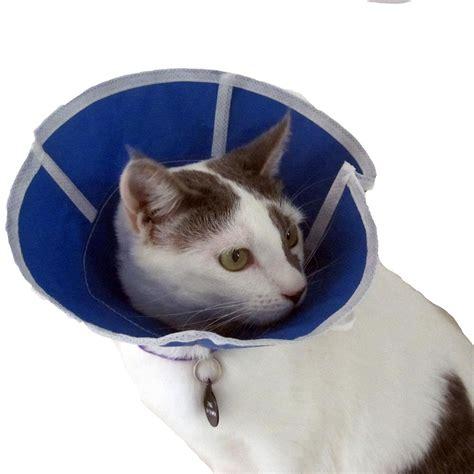 soft e collar for dogs trimline soft elizabethan collar 4 inch e collars at arcata pet supplies