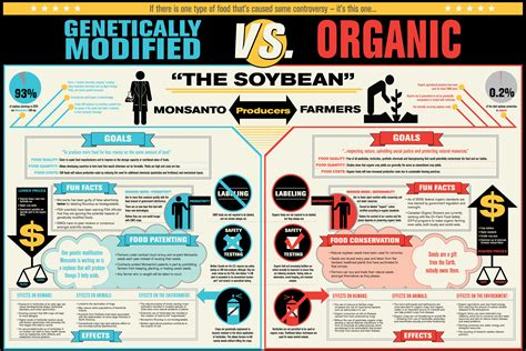 genetically modified foods label gmo vs organic