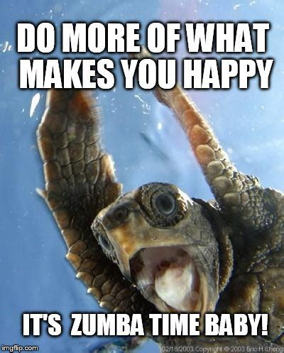 Zumba Meme - happy turtle imgflip