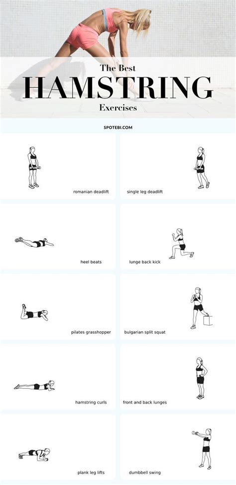 1000 ideas about hamstring strengthening on