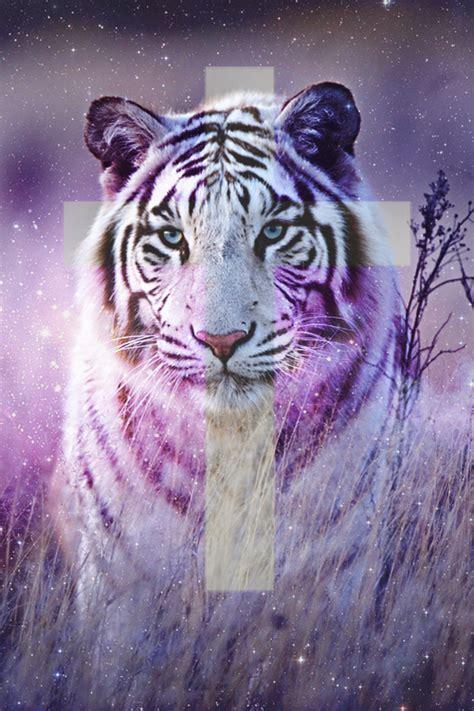 imagenes de leones swag lily and lila tumblr