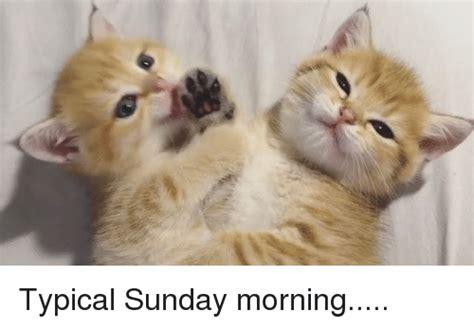 Sunday Morning Memes - funny sunday morning memes of 2017 on sizzle dank