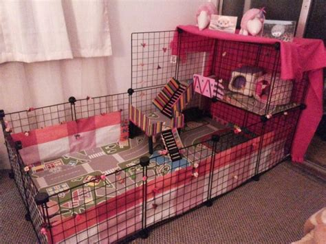 best bedding for guinea pigs best 25 c c cage ideas on pinterest cages for guinea
