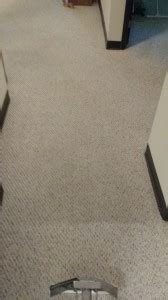 carpet cleaning mt horeb wi