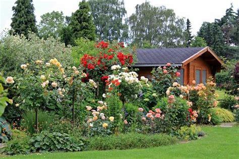 Www Mein Schoener Garten 2094 by Und Clematis Clerotiker 2014 Page 106 Mein