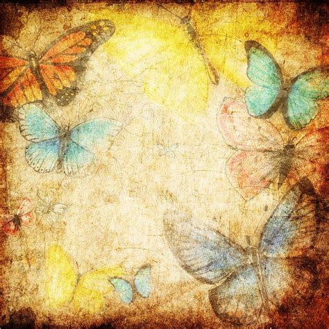 butterfly old vintage free ppt backgrounds for your 32 best images about poem backgrounds on pinterest