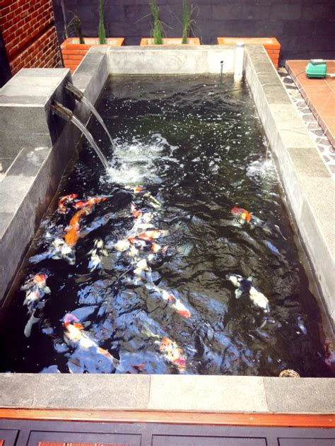 Water Heater Kolam Ikan 605 best fish farming images on backyard ponds fish ponds and garden ponds