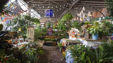 urban garden center top  plant stores  nyc urban