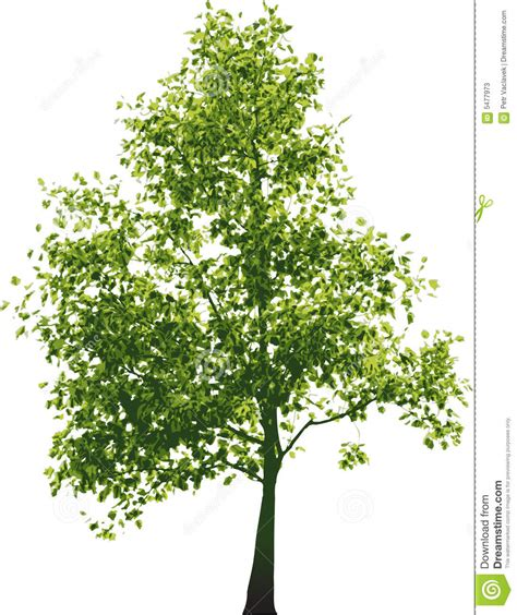 white and green tree vector green tree stock photos image 5477973