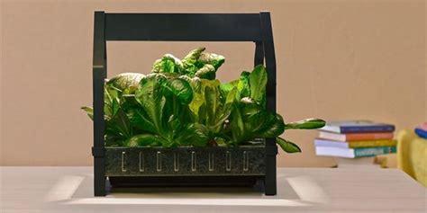 coltivazione idroponica in casa idroponica da ikea arriva il kit per coltivare l orto in